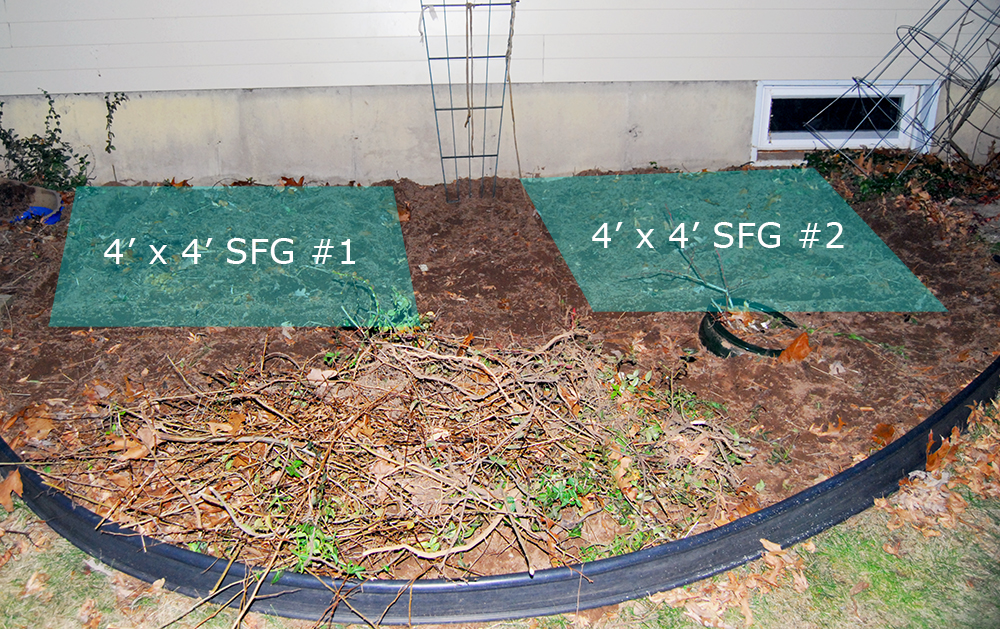 square foot gardening bed location